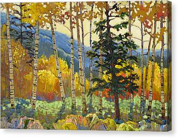 Fall In The San Juans Canvas Print by Susan McCullough