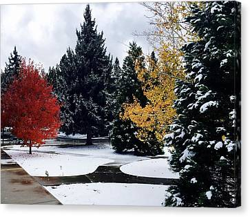 Fall Into Winter Canvas Print by Russell Keating