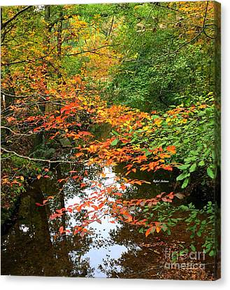 Fall Is In The Air Canvas Print by Rafael Salazar