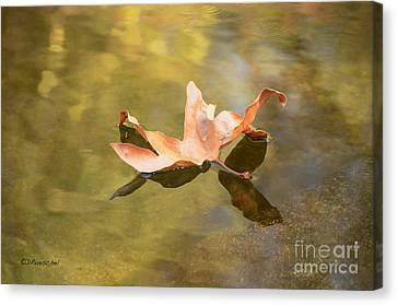 Fall Leaf Floating Canvas Print