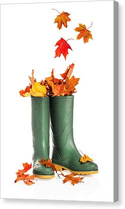 Fall Leaves In Boots Canvas Print by Amanda Elwell