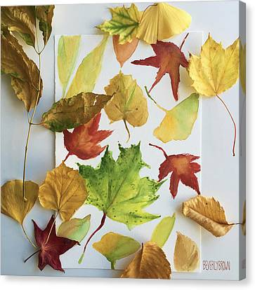 Fall Leaves In My Studio Canvas Print by Beverly Brown