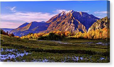 Fall Meadow Canvas Print by Chad Dutson