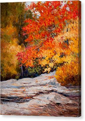 Fall Mountain Foliage Canvas Print