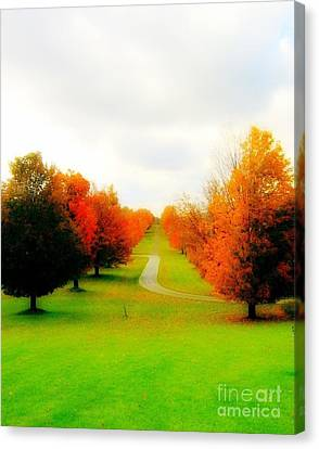 Fall New York State Canvas Print