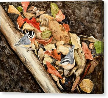 Fall Nuthatch Pair Canvas Print