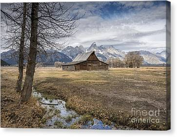 Canvas Print featuring the photograph Fall On Mormon Row - Grand Teton National Park by Sandra Bronstein