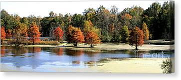 Southern Indiana Autumn Canvas Print - Fall On The Muscatatuck - Southern Indiana by Scott D Van Osdol