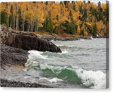 Fall On The Shore Canvas Print