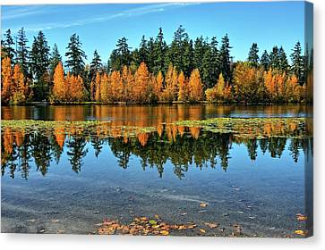Fall On Wapato Canvas Print by Tim Coleman