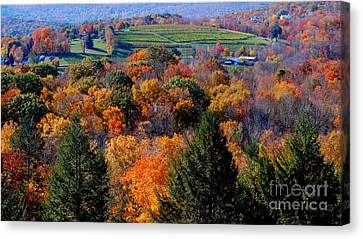 Fall Profusion Canvas Print by Andrea Simon