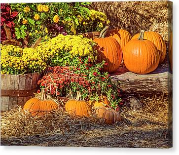 Canvas Print featuring the photograph Fall Pumpkins by Carolyn Marshall