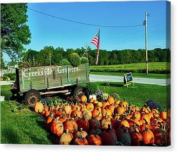 Fall Pumpkins Canvas Print by Mountain Dreams