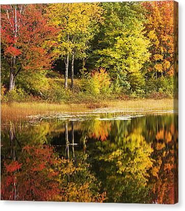 Canvas Print featuring the photograph Fall Reflection by Chad Dutson