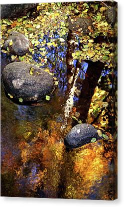 Fall Reflections Ashland Creek Canvas Print by Jim Nelson