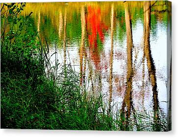 Canvas Print featuring the photograph Fall Reflections by Elfriede Fulda