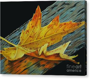 Fall Reflections Canvas Print by Jennifer Watson