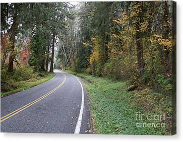Fall Road Washington Canvas Print