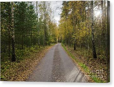 Canvas Print featuring the photograph Fall Season Adventure by Kennerth and Birgitta Kullman