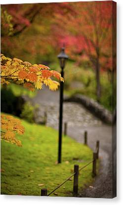 Fall Serenity Canvas Print by Mike Reid