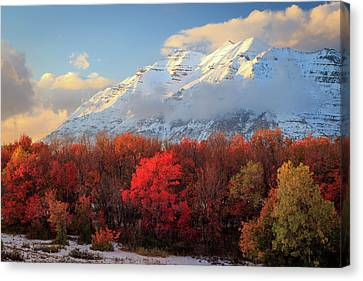 Canvas Print featuring the photograph Fall Snow On Timpanogos. by Johnny Adolphson