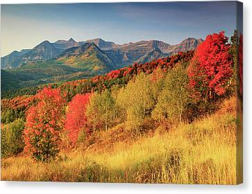 Canvas Print featuring the photograph Fall Splendor With Mount Timpanogos. by Johnny Adolphson