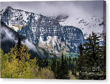 Canvas Print featuring the photograph Fall Storm In Wasatch Mountains - Utah by Gary Whitton