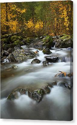 Fall Surge Canvas Print by Mike  Dawson