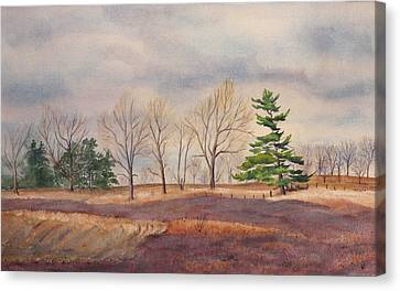 Fall Tapestry Canvas Print by Debbie Homewood