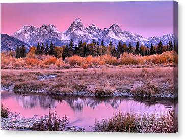 Fall Teton Purple Sunrise Canvas Print