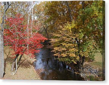 Fall Transition Canvas Print by Eric Liller