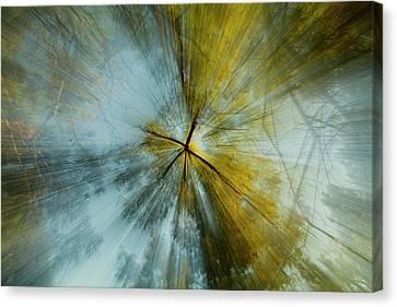 Fall U P  Canvas Print by Gina Zhidov
