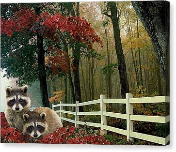 Fall With 'coons Canvas Print