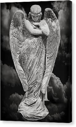 Fallen Angel Canvas Print by Steven Michael