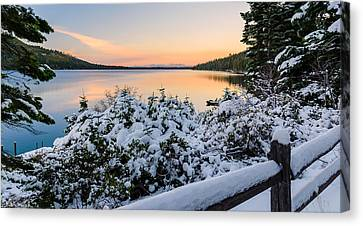 Fallen Leaf Lake Canvas Print by Mike Ronnebeck
