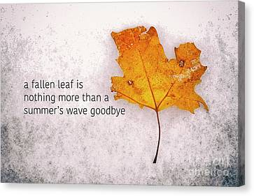 Fallen Leaf On Dirty Ice With Quote Canvas Print