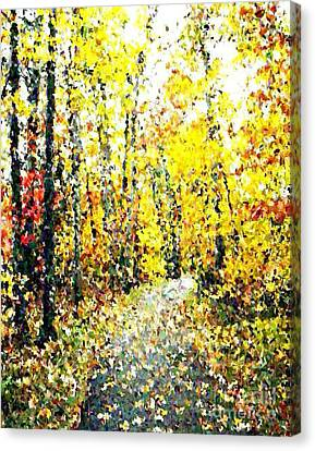 Fallen Leaves Of Autumn Canvas Print by Don Phillips