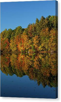 Falling Into The Reflection Canvas Print
