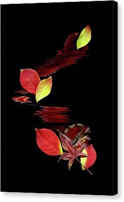 Falling Leaves Canvas Print by Gerlinde Keating - Keating Associates Inc