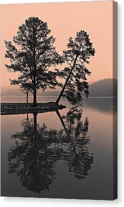 Canvas Print featuring the photograph Falling Tree Reflections by Ron Dubin