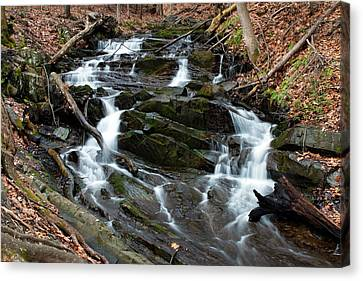 Falling Waters In February Canvas Print by Jeff Severson