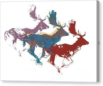 Fallow Bucks Canvas Print by Mark Adlington