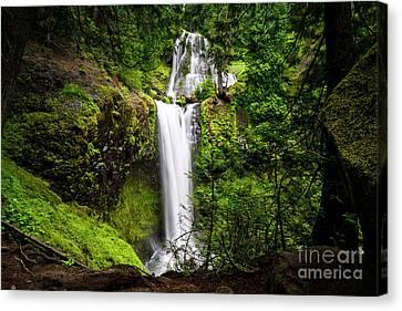 Falls Creek Falls Canvas Print