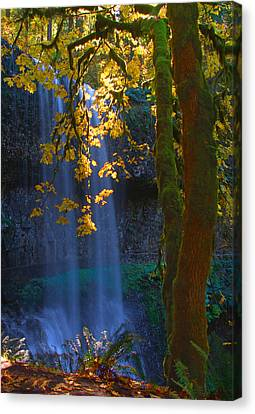 Falls In The Fall Canvas Print by Dale Stillman