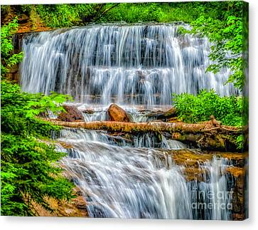 Canvas Print featuring the photograph Falls On Sable Creek by Nick Zelinsky