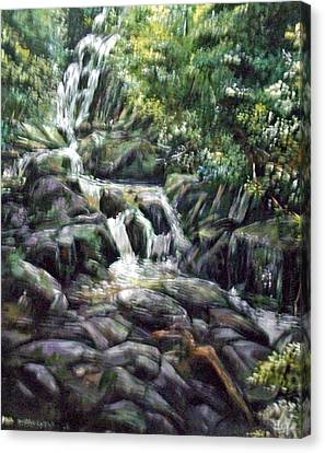 Falls  Canvas Print by Paul Weerasekera