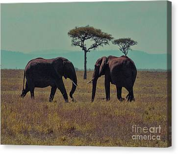 Canvas Print featuring the photograph Family by Karen Lewis