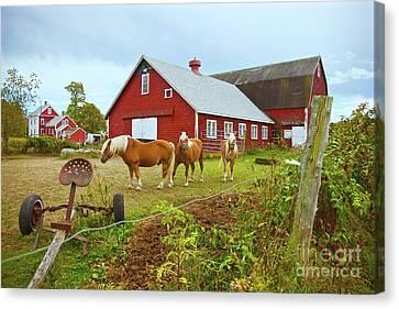 Family On The Farm Canvas Print