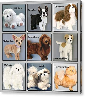Famous Dogs Canvas Print by David and Lynn Keller