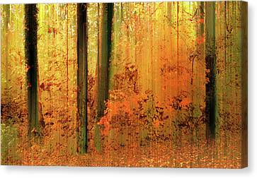 Fanciful Canvas Print - Fanciful Forest by Jessica Jenney